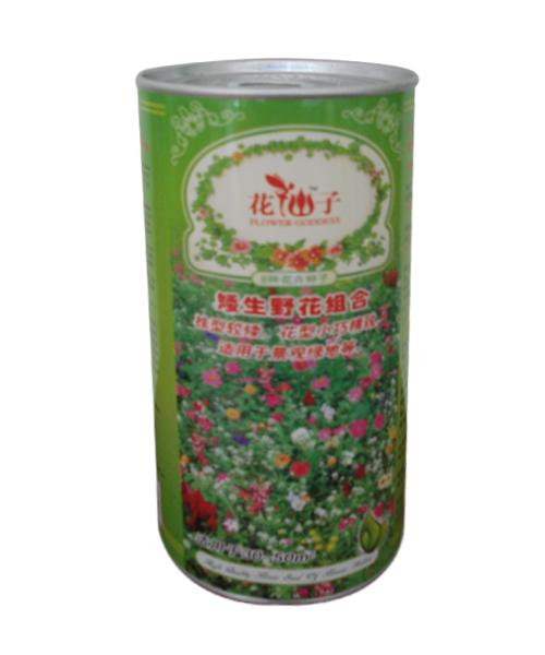 野花种子纸罐