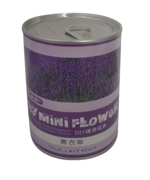 薰衣草种子罐
